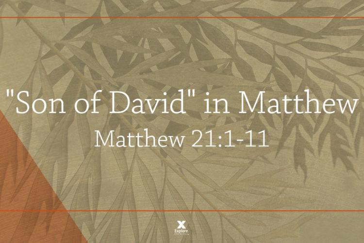 """Son of David"" in Matthew (Matt. 21:1-11  Session 4)"